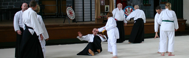 Sensi vince instructing aikido at tbci event.