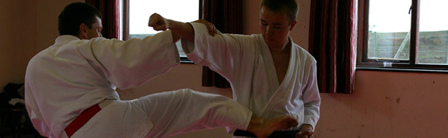 Sensi rick roberts demonstrating jujitsu techniques